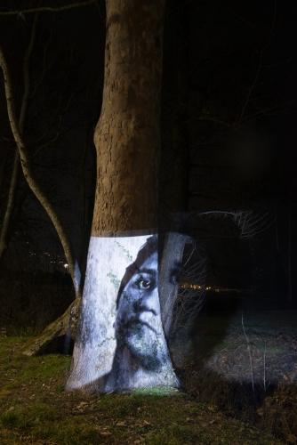 proiezione su albero